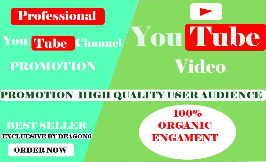 Best Promotion Of Video/channel Via Social Media Marketing