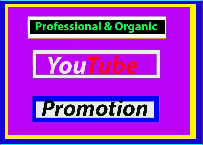Manually promote instant High-Quality Via Social Media Marketing