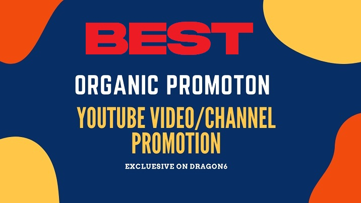 Professional Top Organic YouTube Video promotion