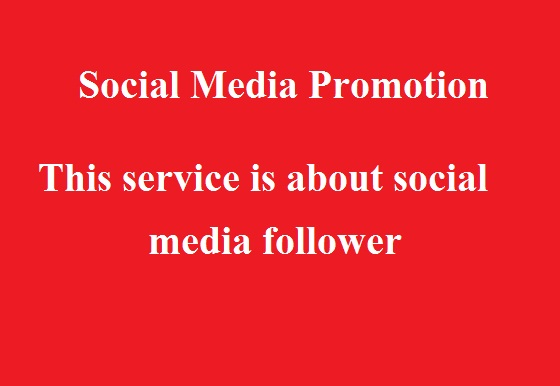 Social Media Promotion 200 High Quality fast