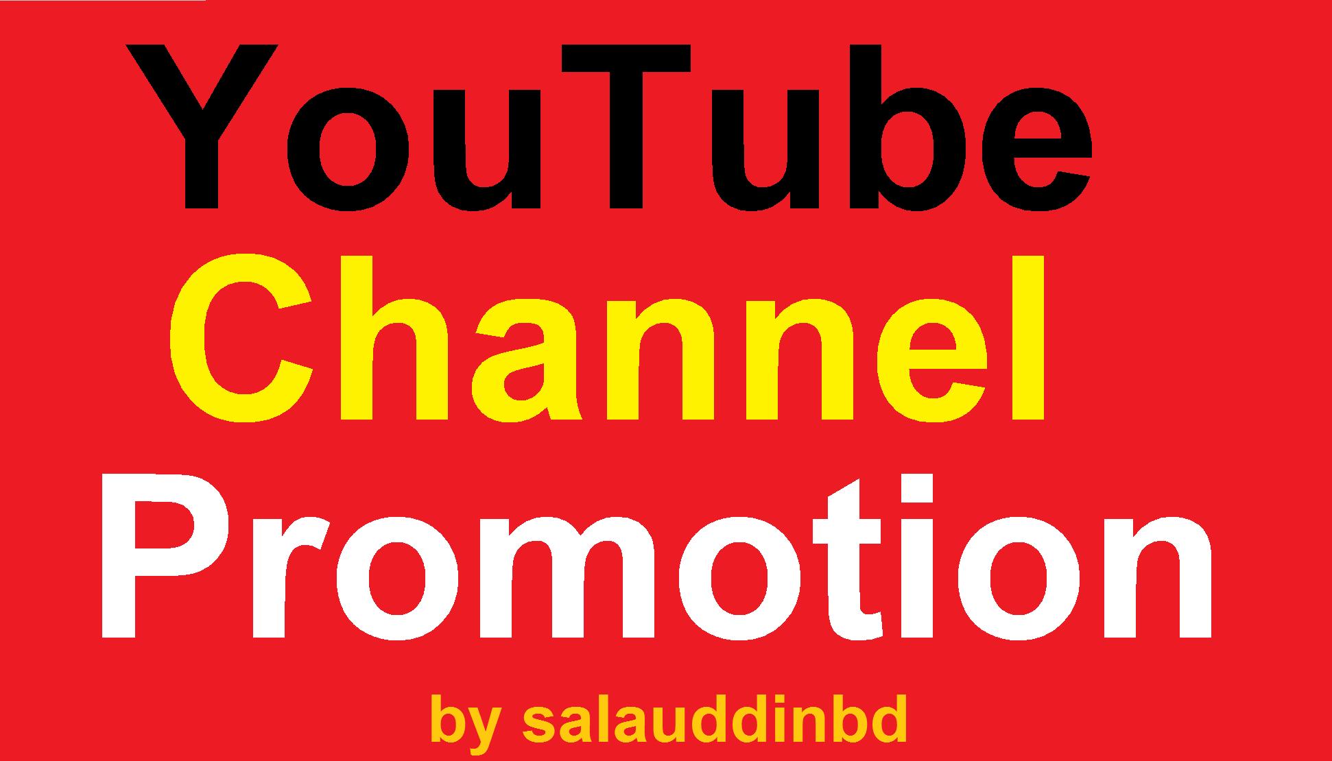 I will Do Manually YouTube High Quality Promotion Marketing