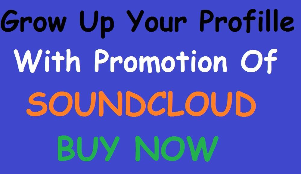 Get Best Social Media Promotion Fast & Safe