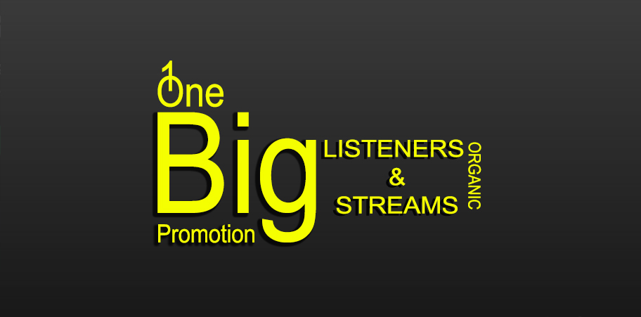 Build Monthly Listeners And Track Streams For Your Music
