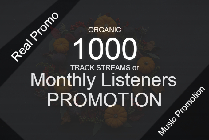 Do Organic Monthly Listeners Promotion To Increase Your Track Streams