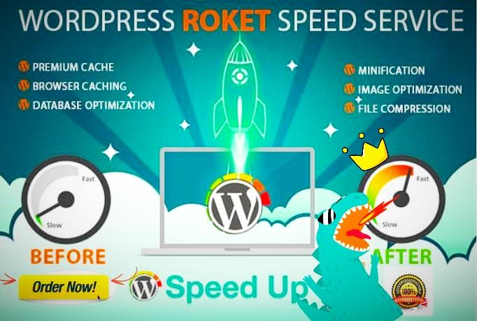 WordPress Speed Optimization with Pro Plugin