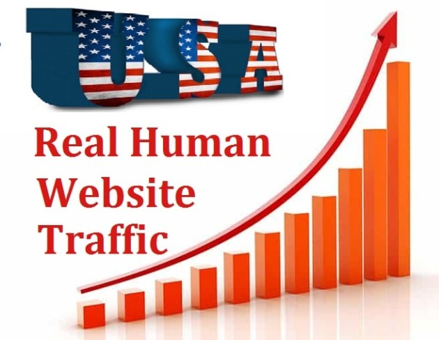 1000 Real USA website traffic within 24 hours