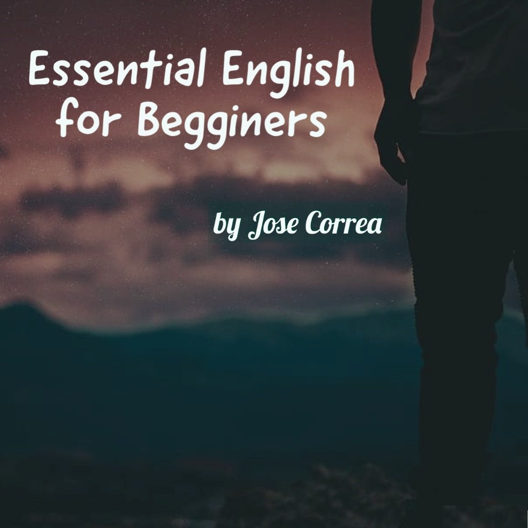 English Video Lessons for Beginners