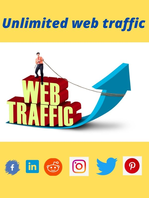 I will provide original web traffic