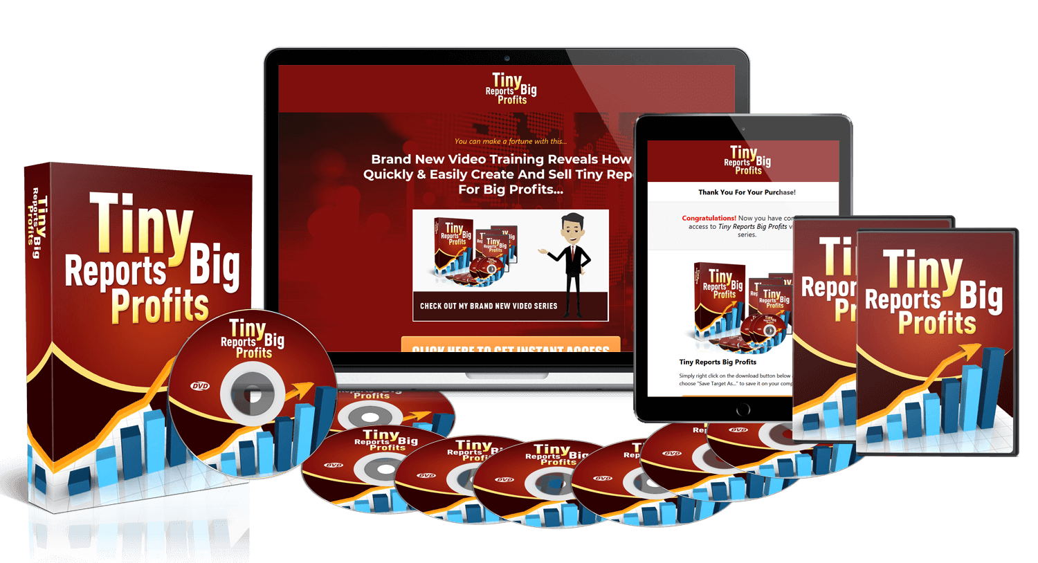 Get Tiny Reports Big Profits&rdquo Video Training PLR