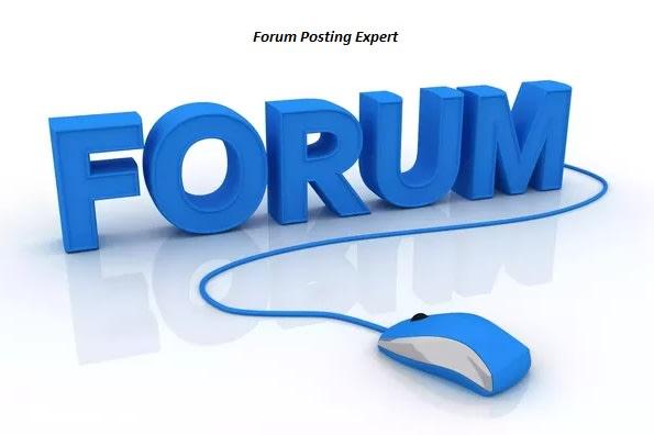 I will create 10 niche unique forum posts