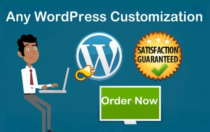 customize existing wordpress site or redesign site