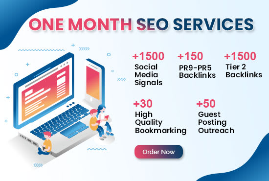 I will do SEO campaign for 1 month WordPress,  eCommerce Website