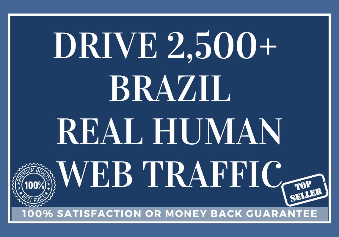 Drive 2,500 BRAZIL Real Human Web Traffic