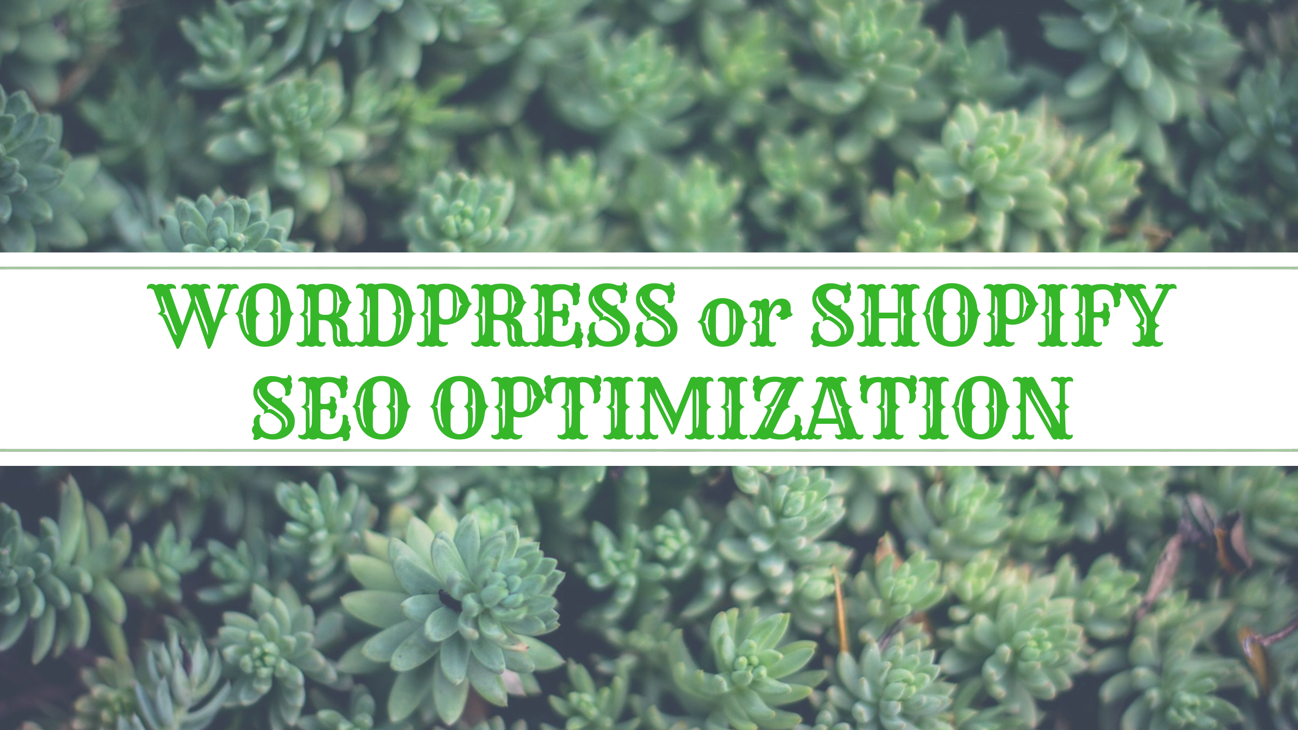 SEO for WordPress or Shopify sites, Full on-page SEO Optimization
