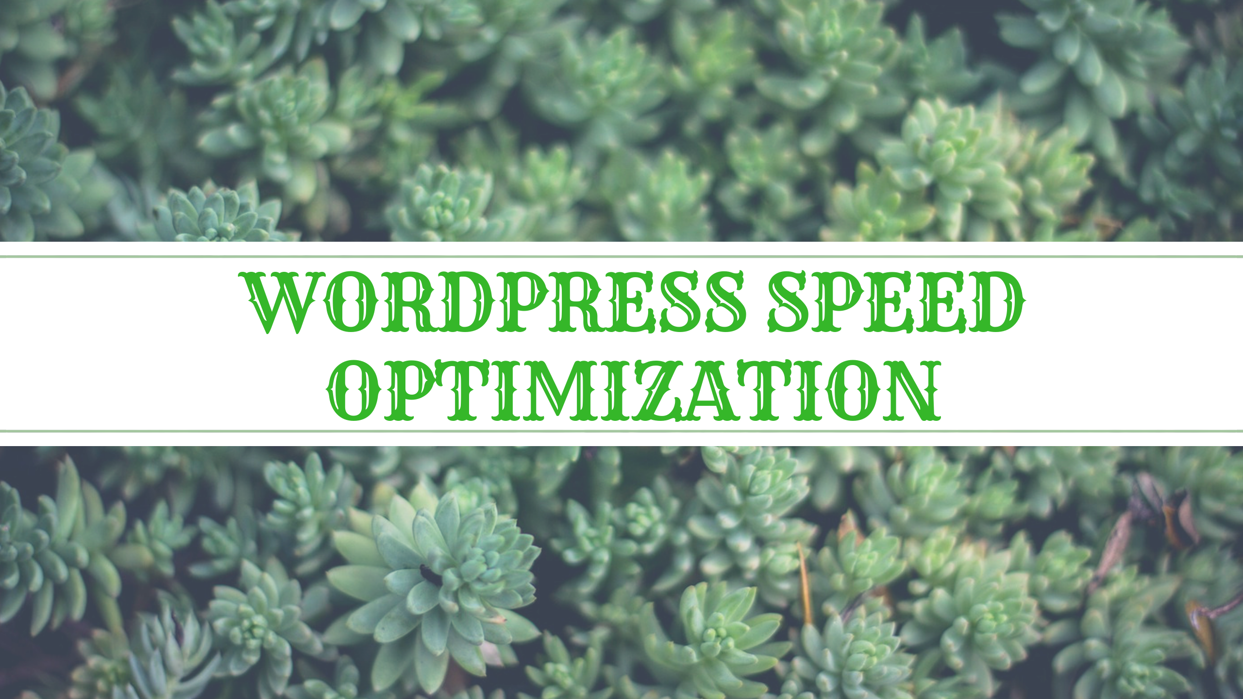 Wordpress Speed optimization,  Boost up your WordPress site performance