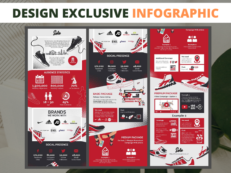 Design an exclusive infographic