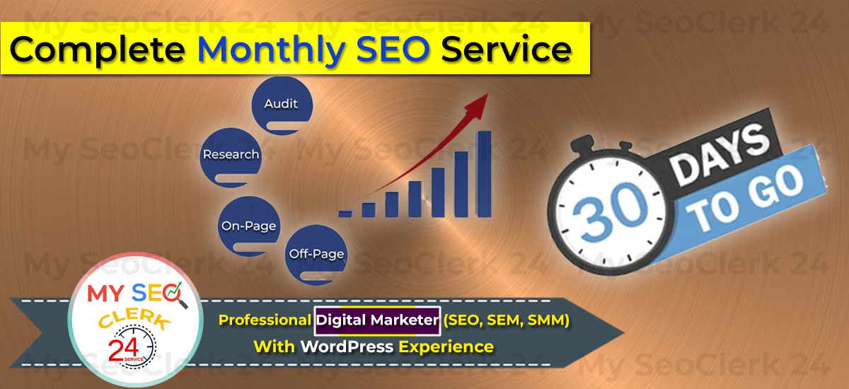 You will get complete monthly SEO service for google first page ranking