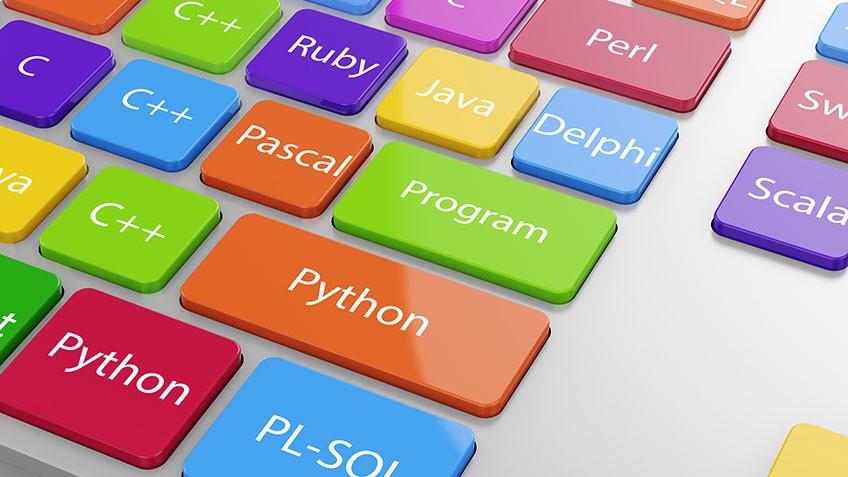 C,  JAVA,  C +,  Oracle Database,  SQL Database Developer