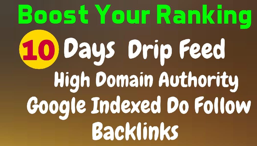 10 days drip feed offpage seo DA 50+ links
