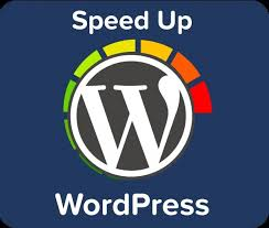 I can do any wordpress seo within your time limit