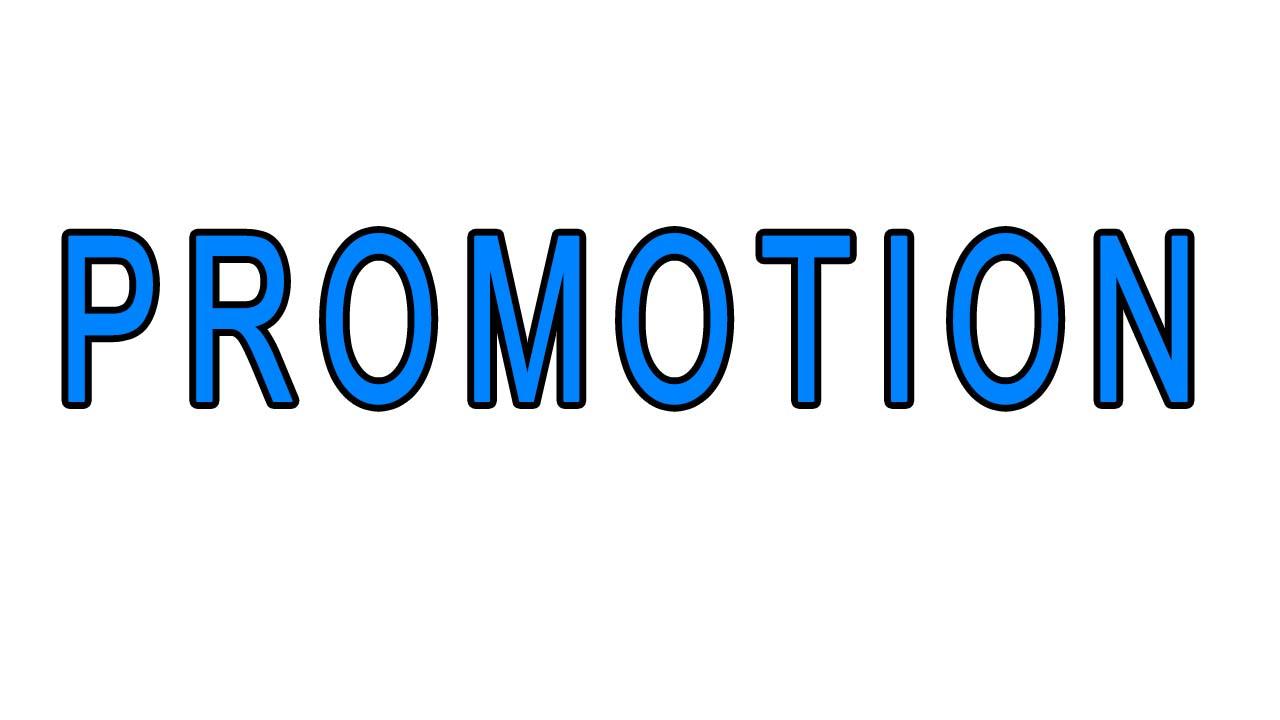500 Traffic on Website or YT promotion