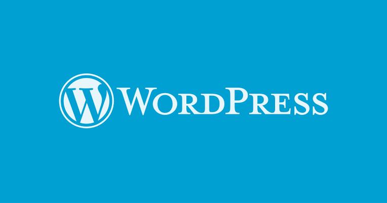 I will develop professional wordpress, wix, weebly website