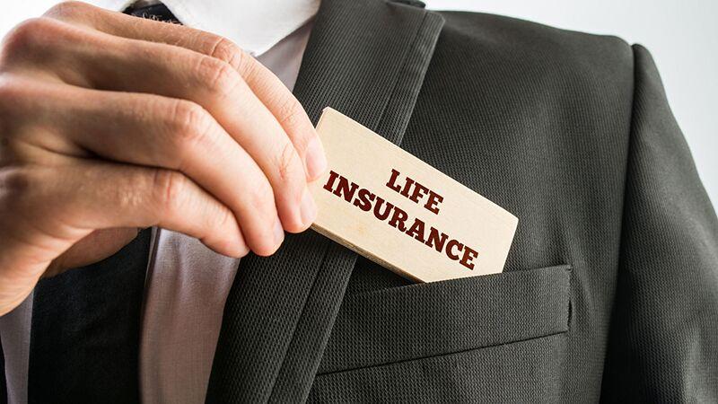 60 insurance niche related SEO backlinks