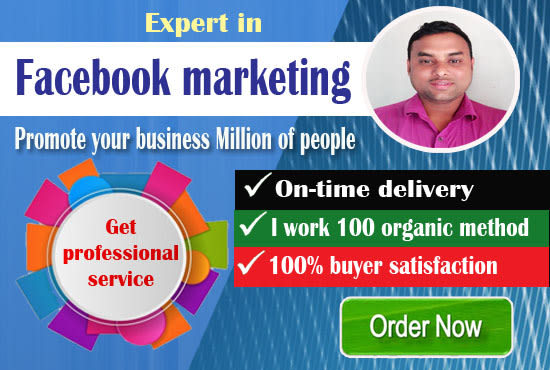 I will do professional Facebook marketing for your business