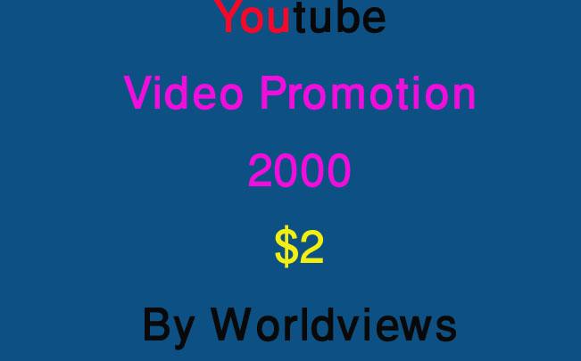 Super Fast High Retention Safe Promotion Non drop