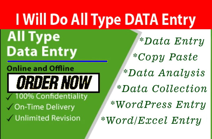 I can do any TYPES of Data Entry Works within 24 Hours
