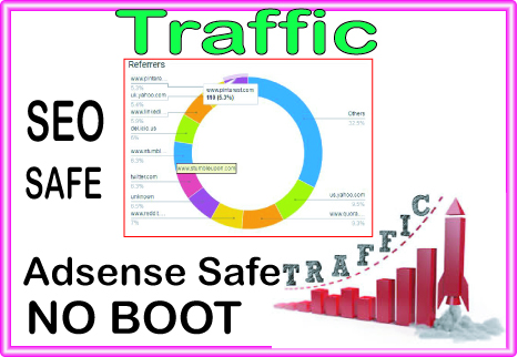 Do 4500 niche targeted website, traffic, visitors