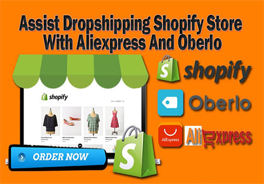 Create Build And Setup Aliexpress Dropshipping Shopify Store