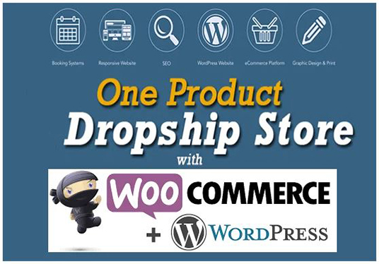 Build Wordpress Ecommerce Website Or Dropshipping Store