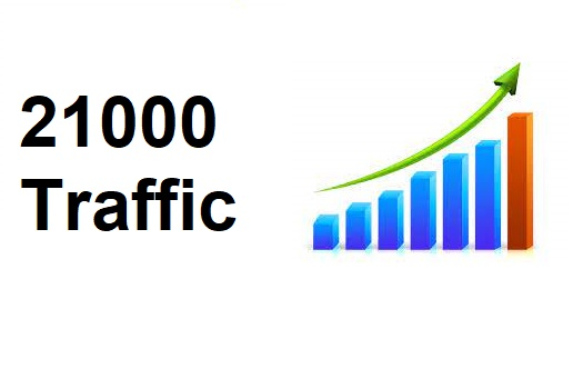 Send 21000+ Human Traffic by Google Twitter Bing Youtube etc
