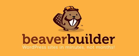 Beaver Builder Pro V2.4.1.3 Plugin Activated