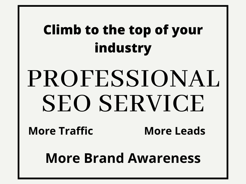 Climb Page 1 with Professional off Page SEO Service