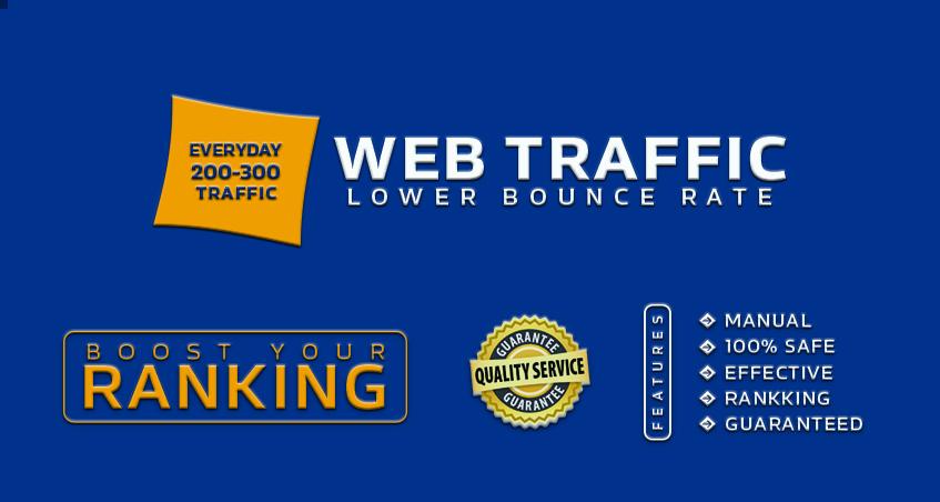Each Day 200-300 worldwide website traffic for 15 days