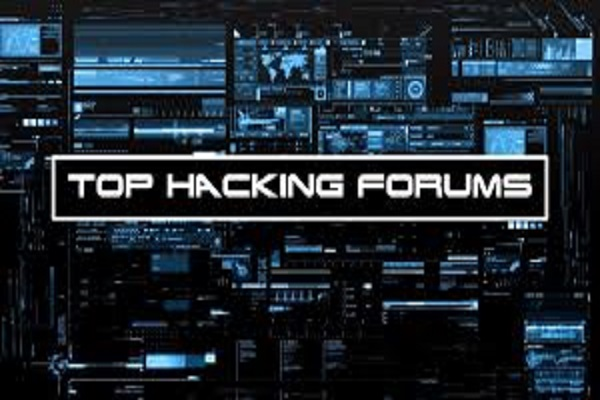 I WILL test your website if it is ddos vulnerable,  also can ddos for you