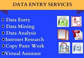 I can do any types of Data Entry.