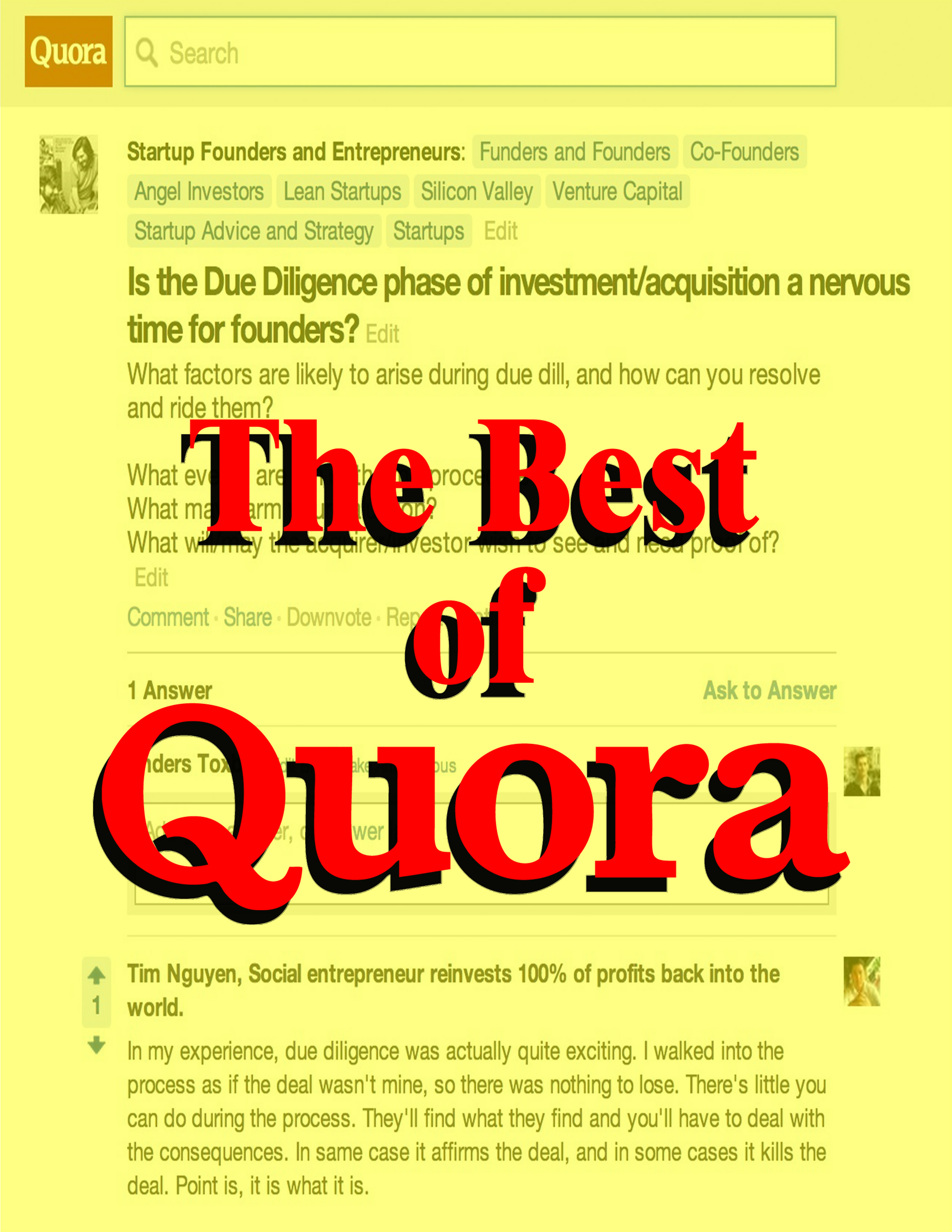 Guaranteed 15 HQ qoura with Upvotes promote your webs...