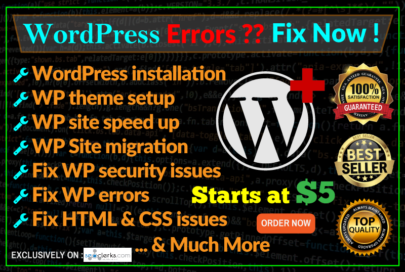 I Install Wordpress,  Setup Theme And Fix Any Wp Issues Or Errors