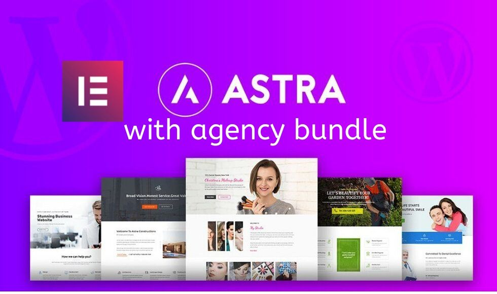 Install elementor pro and astra pro with agency bundle