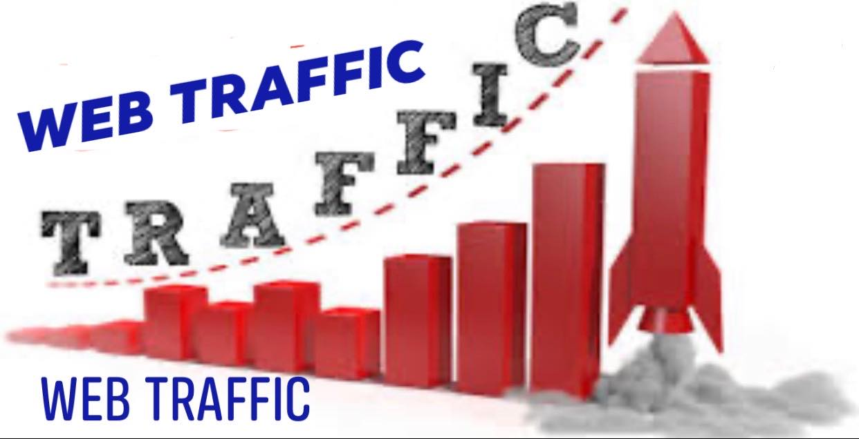 Real web visitors for 30 days with search keyword and web traffic