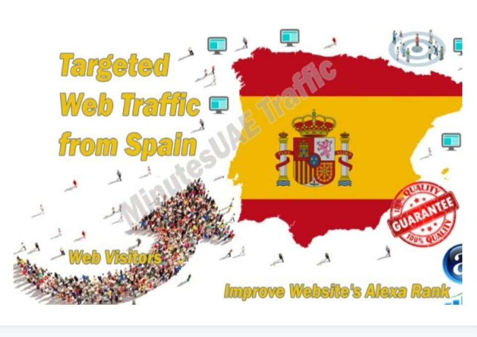 web visitors real targeted Organic web traffic from Spain