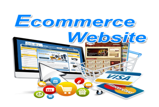 I will build ecommerce website professionally online store