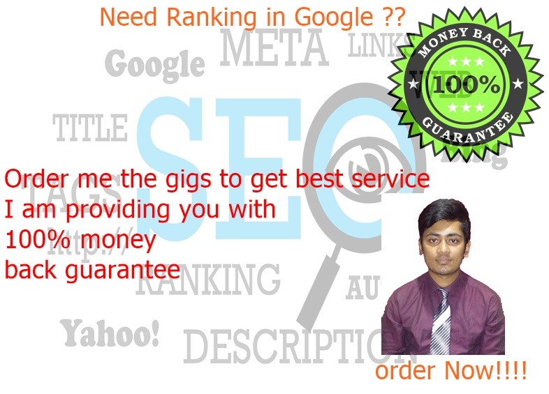 Google Ranking Guaranteed with full month SEO