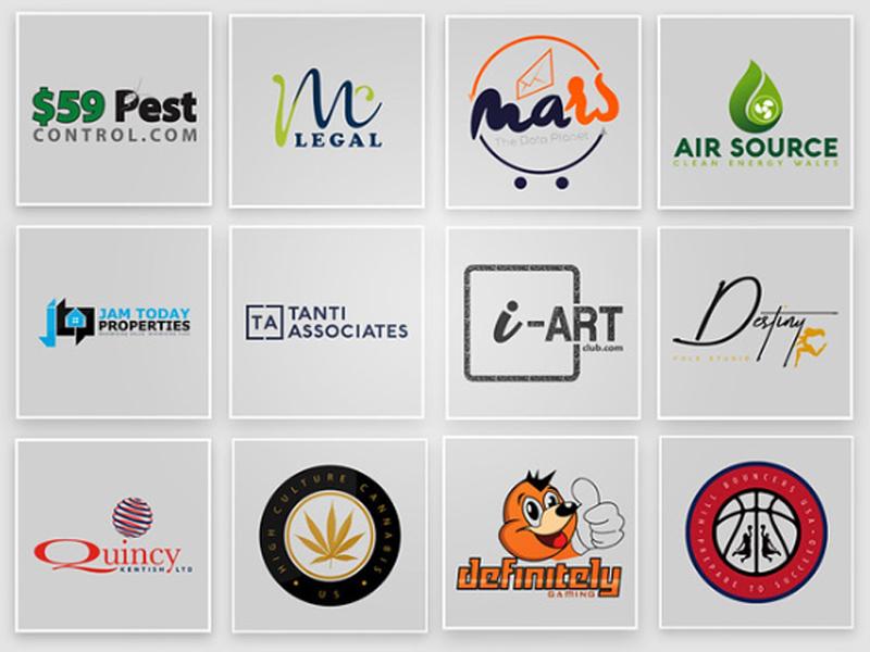 create a professional business logo design