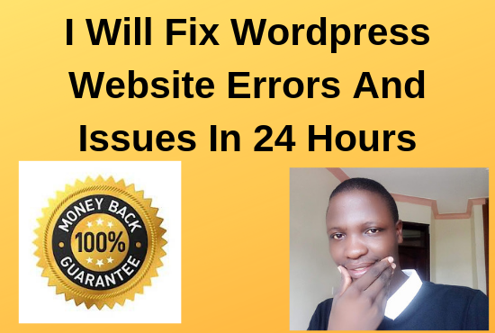 I'll fix wordpress website errors in 24 hours