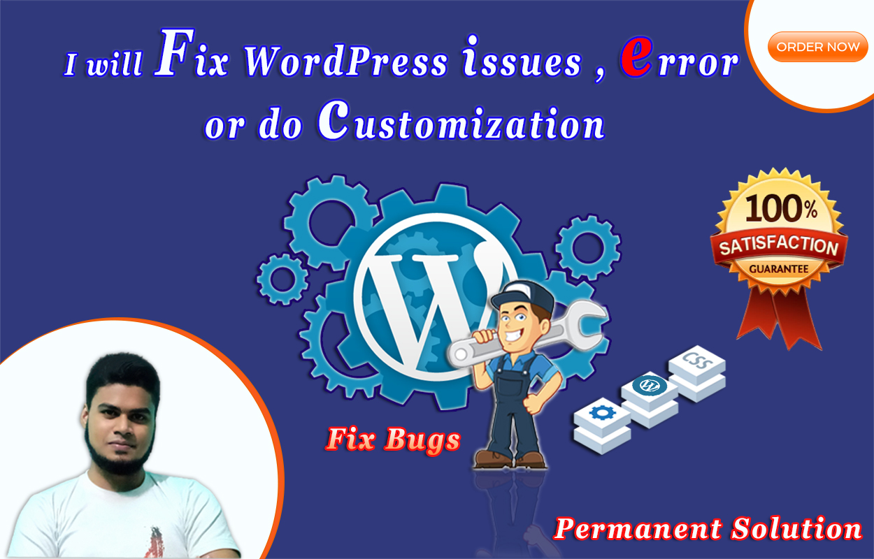 I will fix WordPress issues,  error or do customization