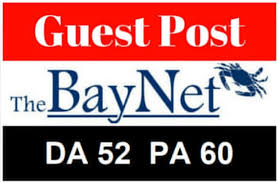 Provide high authority Backlinks on thebaynet with DA 60